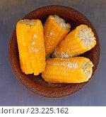 Кукуруза в початках в миске. Стоковое фото, фотограф Дегтярева Виктория / Фотобанк Лори
