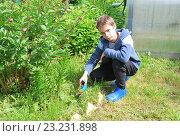 Подросток обрезает траву. Стоковое фото, фотограф Инесса Гаварс / Фотобанк Лори