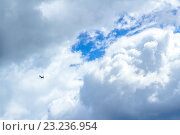Купить «Самолет в облаках», фото № 23236954, снято 10 июля 2016 г. (c) Йомка / Фотобанк Лори