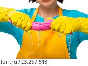 Купить «Хозяйка в жёлтых резиновых перчатках выжимает тряпку», фото № 23257518, снято 6 февраля 2016 г. (c) Константин Лабунский / Фотобанк Лори