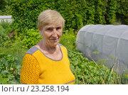 Купить «Портрет пожилой женщины на дачном участке», эксклюзивное фото № 23258194, снято 10 июля 2016 г. (c) Елена Коромыслова / Фотобанк Лори