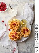 Купить «Сладкие вафли с малиной», фото № 23258486, снято 18 июня 2016 г. (c) Афанасьева Ольга / Фотобанк Лори
