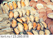 Купить «oysters or seafood on ice at asian street market», фото № 23260818, снято 7 февраля 2015 г. (c) Syda Productions / Фотобанк Лори