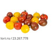 Купить «Разноцветные помидоры разных сортов на белом фоне изолировано», фото № 23267778, снято 1 мая 2012 г. (c) Наталья Волкова / Фотобанк Лори