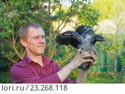 Человек держит в руках  молодую серую ворону. Стоковое фото, фотограф Лощенов Владимир / Фотобанк Лори