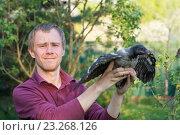 Человек держит в руках серую ворону. Стоковое фото, фотограф Лощенов Владимир / Фотобанк Лори