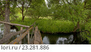 Старый мостик через речку. Стоковое фото, фотограф Сергей Панкин / Фотобанк Лори