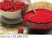 Купить «Красная смородина перетертая с сахаром в миске и ягоды», эксклюзивное фото № 23286570, снято 20 июля 2016 г. (c) Яна Королёва / Фотобанк Лори