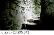 Купить «stairs of old medieval subterranean or basement 57», видеоролик № 23295342, снято 8 июля 2016 г. (c) Syda Productions / Фотобанк Лори