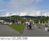 Купить «Веломобиль на дорожке в Олимпийском парке Сочи, зеленый газон с пальмами, город на горизонте», фото № 23295598, снято 1 июня 2016 г. (c) DiS / Фотобанк Лори
