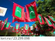 Мальдивский флаг (2015 год). Стоковое фото, фотограф Татьяна Руденко / Фотобанк Лори