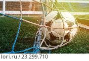 Футбольный мяч в сетке ворот. Стоковое фото, фотограф Дмитрий Бачтуб / Фотобанк Лори