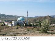 Купить «Мечеть на фоне гор, Солнечная долина, Крым», фото № 23300658, снято 21 мая 2016 г. (c) Галина Хорошман / Фотобанк Лори