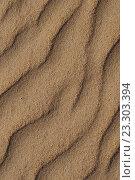 Купить «Следы на песке», фото № 23303394, снято 8 июля 2016 г. (c) Дрогавцева Оксана / Фотобанк Лори
