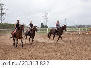 Купить «Три наездницы скачут на лошадях внутри загона», фото № 23313822, снято 23 июля 2016 г. (c) Кекяляйнен Андрей / Фотобанк Лори