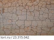 Купить «Трещины земли», фото № 23315042, снято 16 августа 2018 г. (c) Сергей Эшметов / Фотобанк Лори