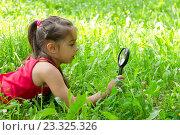 Купить «Ребенок рассматривает траву через увеличительное стекло», фото № 23325326, снято 27 июля 2016 г. (c) Лариса Капусткина / Фотобанк Лори
