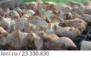 Купить «Мясо на гриле», видеоролик № 23330830, снято 27 ноября 2015 г. (c) Курганов Александр / Фотобанк Лори