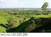 Живописный пейзаж с деревьями в овраге. Стоковое фото, фотограф Андрей Силивончик / Фотобанк Лори