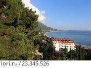Черноморское побережье, город Гагры, Абхазия, эксклюзивное фото № 23345526, снято 24 июля 2016 г. (c) Алексей Гусев / Фотобанк Лори