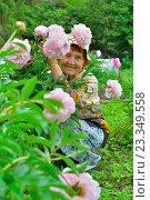 Купить «Пожилая женщина садовод улыбается в кустах розовых пионов», фото № 23349558, снято 27 июня 2016 г. (c) Максим Мицун / Фотобанк Лори