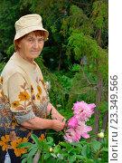 Купить «Пожилая женщина садовод стоит и улыбается рядом с розовыми пионами», фото № 23349566, снято 27 июня 2016 г. (c) Максим Мицун / Фотобанк Лори