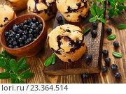 Купить «Маффины с лесными ягодами на столе», фото № 23364514, снято 4 августа 2016 г. (c) Надежда Мишкова / Фотобанк Лори