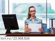 Купить «Young businesswoman working in the office», фото № 23368826, снято 17 июня 2016 г. (c) Elnur / Фотобанк Лори