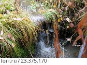 Водопад на ручейке. Стоковое фото, фотограф Виктор Кораблёв / Фотобанк Лори