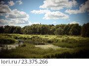 Окрестности села Трубино, Калужская область (2016 год). Стоковое фото, фотограф Дарья Арифуллина / Фотобанк Лори