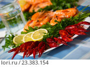 Купить «Delicious Mediterranean seafood shrimps and crawfish close up», фото № 23383154, снято 24 февраля 2020 г. (c) Яков Филимонов / Фотобанк Лори