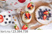 Купить «Fresh yogurt and berries for a healthy breakfast.», фото № 23384738, снято 18 мая 2016 г. (c) Tatjana Baibakova / Фотобанк Лори