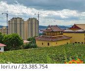 Купить «Китай - старое и новое», фото № 23385754, снято 19 июля 2016 г. (c) Корнилова Светлана / Фотобанк Лори