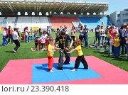 Детский фестиваль единоборств (2014 год). Редакционное фото, фотограф Токсаров Владимир Андреевич / Фотобанк Лори
