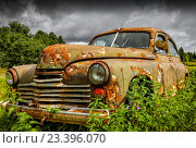 Купить «Старый ржавый автомобиль ГАЗ -M20 Победа», фото № 23396070, снято 3 августа 2016 г. (c) photoff / Фотобанк Лори