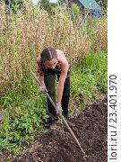 Купить «Девушка закапывает землю тяпкой на огороде», фото № 23401970, снято 6 августа 2016 г. (c) Катерина Белякина / Фотобанк Лори
