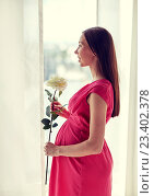 Купить «happy pregnant woman with rose flower at home», фото № 23402378, снято 27 июля 2015 г. (c) Syda Productions / Фотобанк Лори