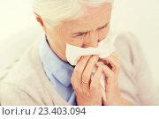 Купить «sick senior woman blowing nose to paper napkin», фото № 23403094, снято 10 июля 2015 г. (c) Syda Productions / Фотобанк Лори