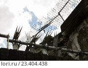 Купить «close up of fence with barbed wire and mesh», фото № 23404438, снято 21 июня 2016 г. (c) Syda Productions / Фотобанк Лори