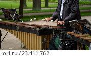 Музыкант играет на ксилофоне. Стоковое фото, фотограф Александр Рыбин / Фотобанк Лори