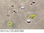 Купить «Абстрактный рисунок от волн на песчаном берегу», фото № 23424566, снято 2 августа 2016 г. (c) Татьяна Егорова / Фотобанк Лори