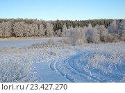 Купить «Зимний пейзаж с инеем», фото № 23427270, снято 29 декабря 2014 г. (c) Елена Коромыслова / Фотобанк Лори
