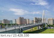 Купить «Вантовый пешеходный мост в район Павшинской поймы», эксклюзивное фото № 23428330, снято 18 августа 2016 г. (c) Виктор Тараканов / Фотобанк Лори