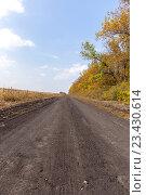 Купить «Пустая грунтовая сельская дорога на краю поля», фото № 23430614, снято 20 сентября 2015 г. (c) Евгений Ткачёв / Фотобанк Лори