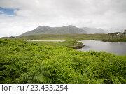 Купить «view to island in lake or river at ireland», фото № 23433254, снято 23 июня 2016 г. (c) Syda Productions / Фотобанк Лори