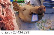 Свиная голова. Стоковое фото, фотограф Владимир Кушнарёв / Фотобанк Лори