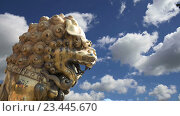 Купить «Бронзовый китайский дракон в Запретном городе. Пекин, Китай», видеоролик № 23445670, снято 29 августа 2016 г. (c) Владимир Журавлев / Фотобанк Лори