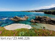 Купить «Atlantic blossoming coastline (Spain).», фото № 23446226, снято 11 мая 2016 г. (c) Юрий Брыкайло / Фотобанк Лори