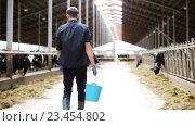 cows and man with bucket of hay walking at farm. Стоковое видео, видеограф Syda Productions / Фотобанк Лори