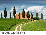 Купить «Сельский дом с кипарисами вокруг, Тоскана, Италия», фото № 23458574, снято 12 мая 2014 г. (c) Наталья Волкова / Фотобанк Лори